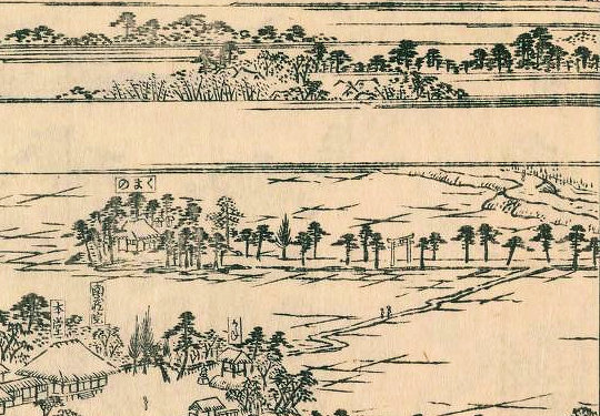 五方山熊野神社『江戸名所図会』(部分)