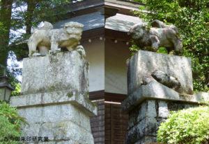 青渭神社狛犬