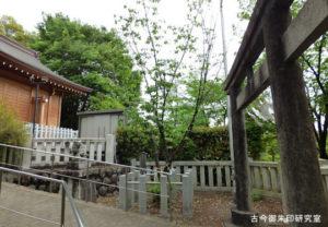 新町御嶽神社鹽竈桜