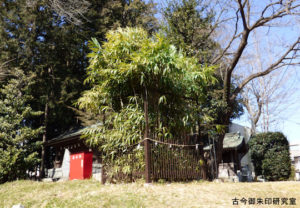二宮神社筒粥の篠竹