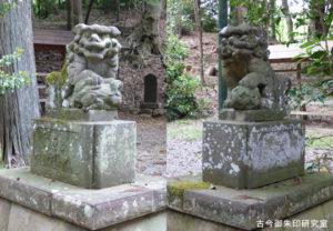 虎柏神社狛犬
