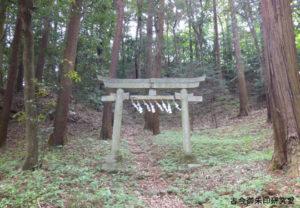 虎柏神社高峯神社の鳥居