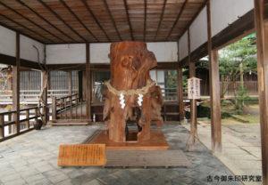 伊太祁曽神社厄難除け木の股くぐり