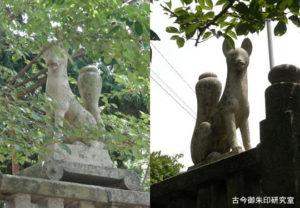 伊豫稲荷神社神狐