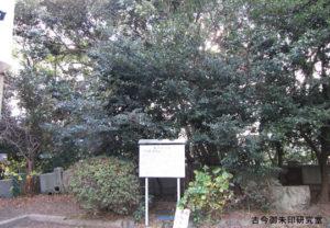 黒嶋神社(黒嶋神宮)ツバキ群生林