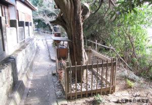 黒嶋神社(黒嶋神宮)安産石