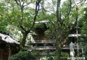 三島神社(伊予三島)本殿